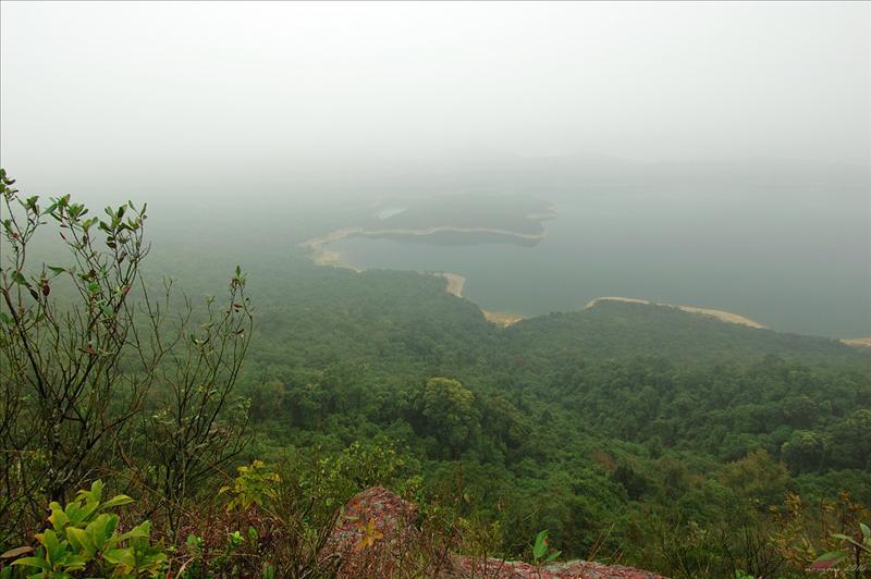 往觀音峒途中右望船灣淡水湖 Plover Cove Reservoir at the right side