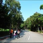 東慶路Tung Hing Road