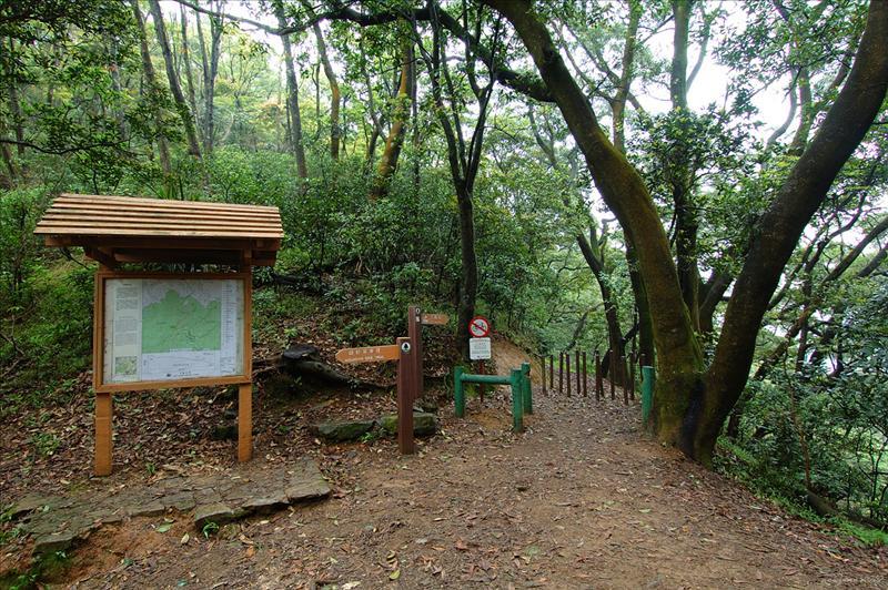 黃麂坳的甲龍林徑入口