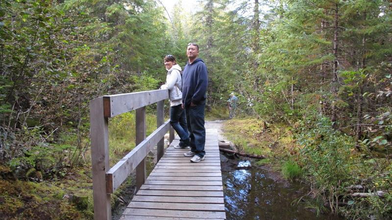 Rain forest trails
