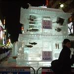 新春北海道訪雪之旅2008—DAY 1