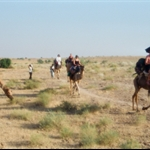 camel trip, Jaisalmer india