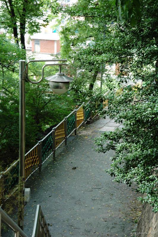 金三順階梯
