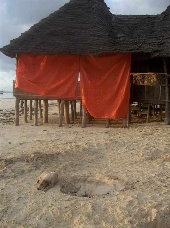 Bwejuu•Zanzibar