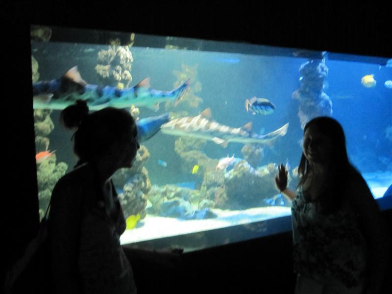 Musee Oceanographique, Monaco, France