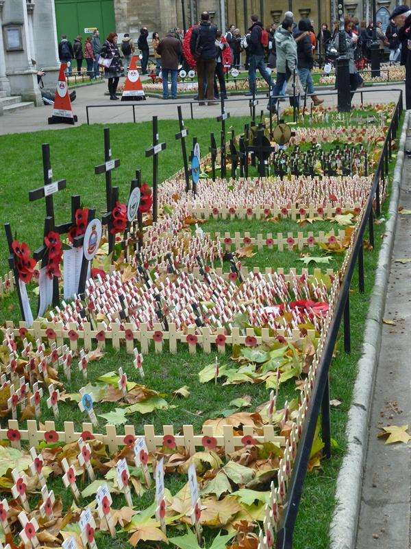 (Rememberance Day) London (11.12)
