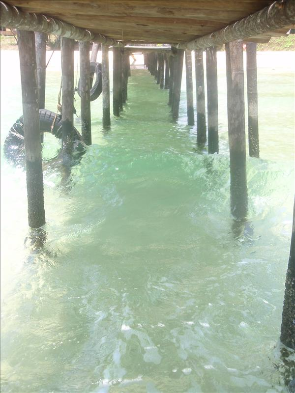 Looking under the pier
