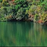 DSC_1639 鶴藪水塘 Hok Tau Reservoir.jpg