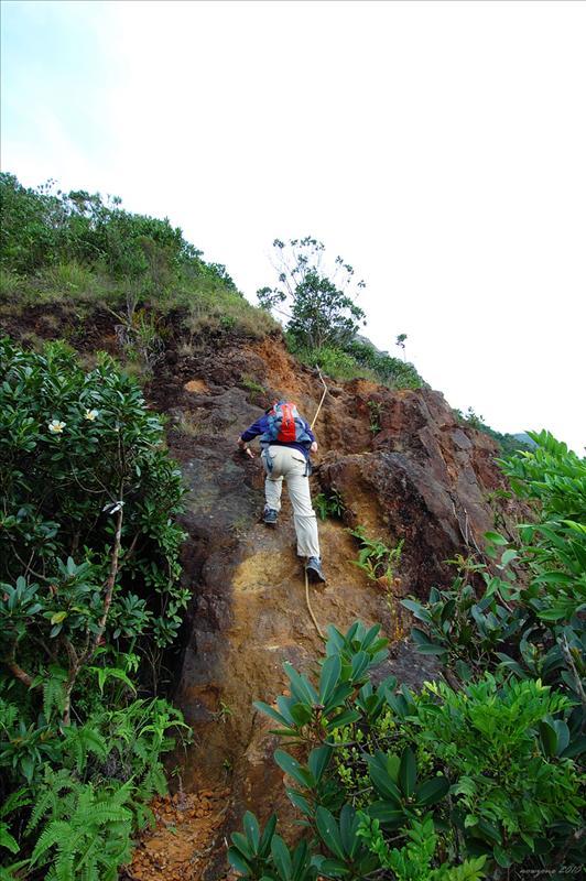 山路開始非常險峻