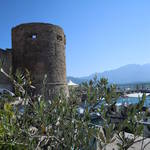 Calvi Corse