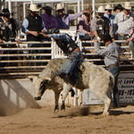 Cave Creek Rodeo 4-1-12 312.jpg