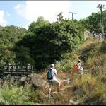 DSCN9839 郊野公園植林計劃的告示牌.jpg