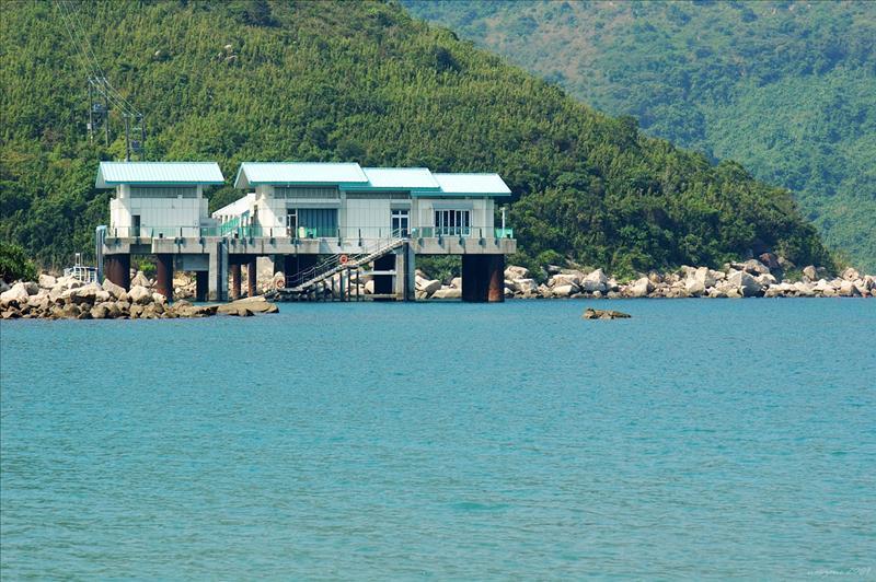 紅樹林望海下灣海洋生物中心 Hoi Ha Marine Life Centre