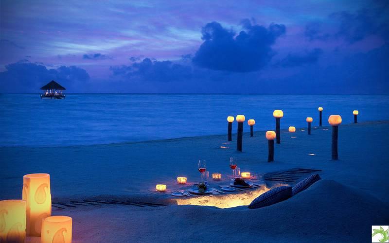 Dinner-at-Beach.jpg
