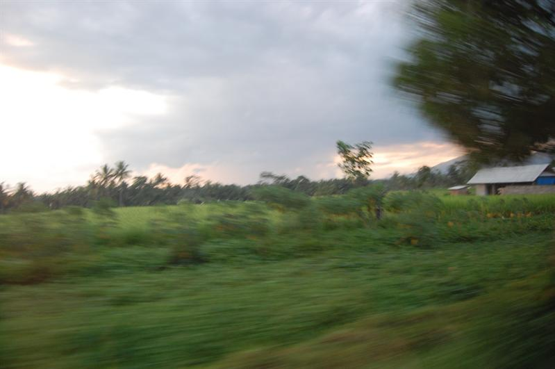 on our way to Ubud