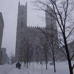 Montréal Winter  2012-2013