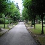 Petrinja (4).JPG