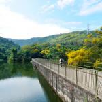 20140503 清潭水塘下花山 Tsing Tam Reservoir  to Ha Fa Shan