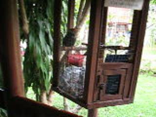Thailand 2008 Trip 118.AVI