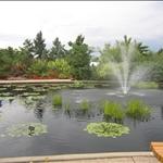 denver botanic garden.jpg