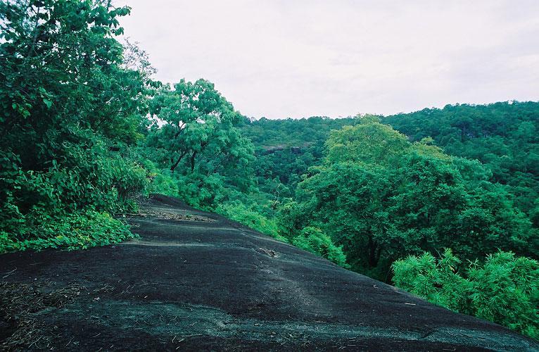 Phuphathoep National Park