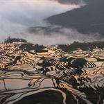Yuanyang, Yunnan, China - 27-29.4.2010
