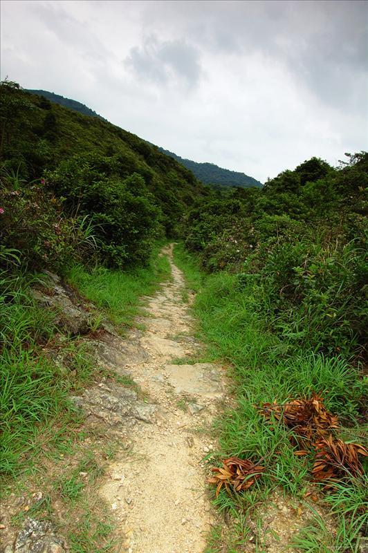 207公尺落主山徑(鳳馬古道)