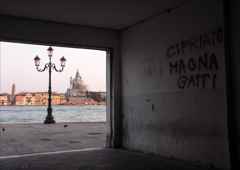 Cipriani Magna Gatti