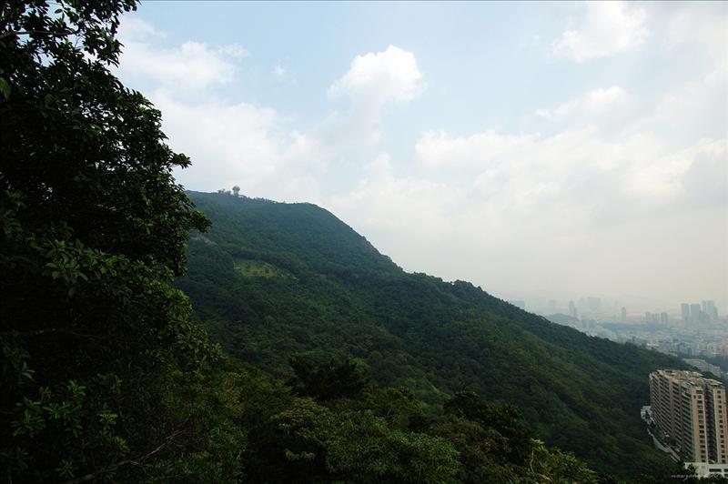 東面的畢架山