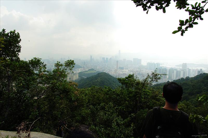 下望鴉巢山及西九龍(Crow's Nest and West Kowloon)