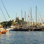 Martin: blue-cruise 2012