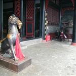 Qingyang Gong (Daoist Temple) 青羊宮
