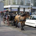 cars, horses, pedestrians, bicyclists etc. all share the road