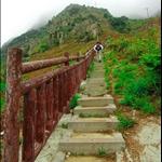DSC_3233 往山上走.jpg