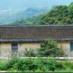 寨乪過梧桐寨村