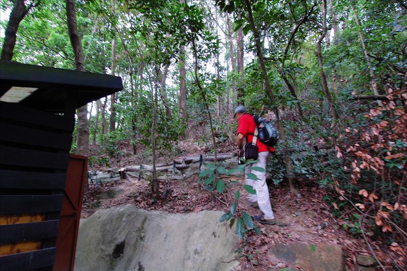 公廁後面接上龍山的登山徑
