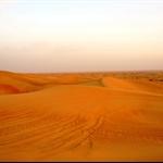 Desert Safari 2012