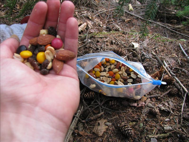 trailmix: het voedsel voor de hiker