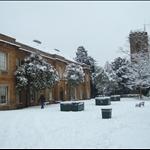 Abington Park