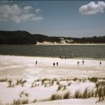 NINETY MILE BEACH, NI - MAR 2004