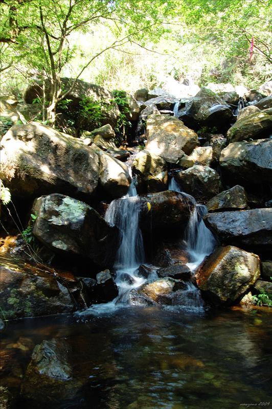 大圓石澗第三段上源 Tai Yuen Stream Section 3