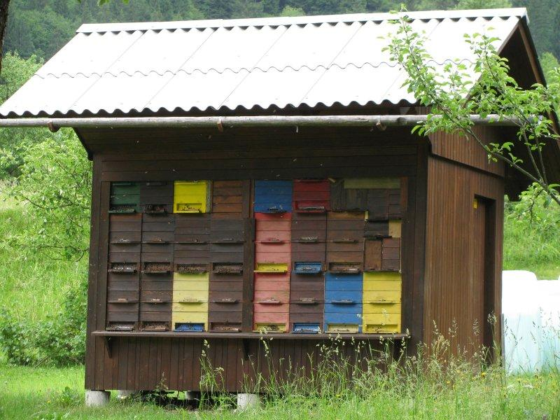 Colourful bee hives come in quantity here.