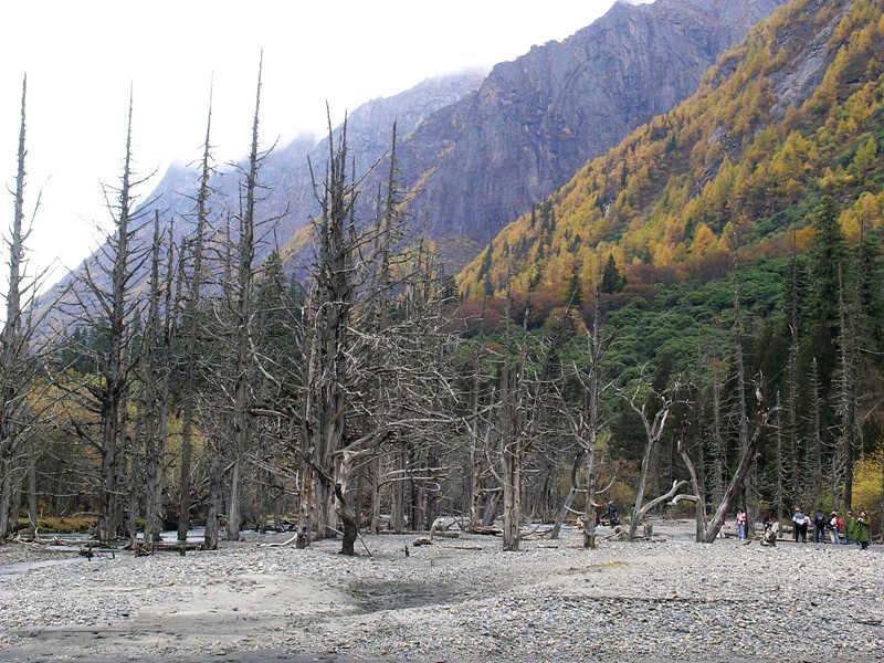 KushuTan枯樹灘