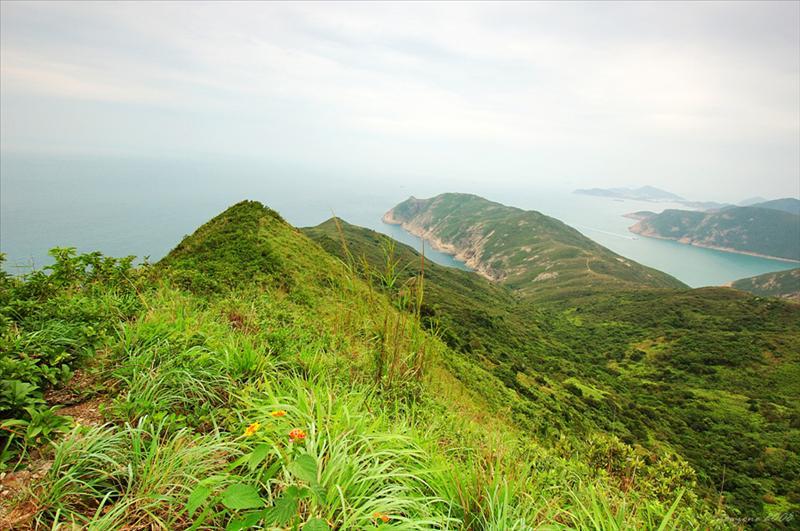 睇魚岩頂 Tai Yue Ngam Teng ( 約230米高)