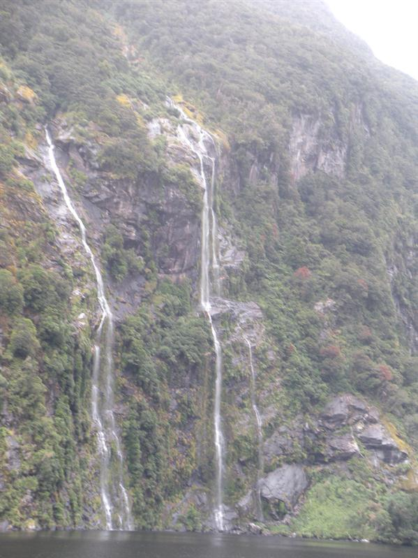 Some of the vertical waterfalss at Doubtful Sound
