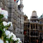 Brussels (Gran Place)
