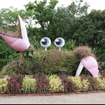 Ryukyu village&Aquarium