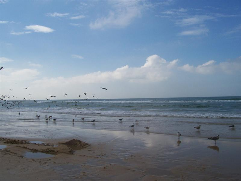 Caparica beach