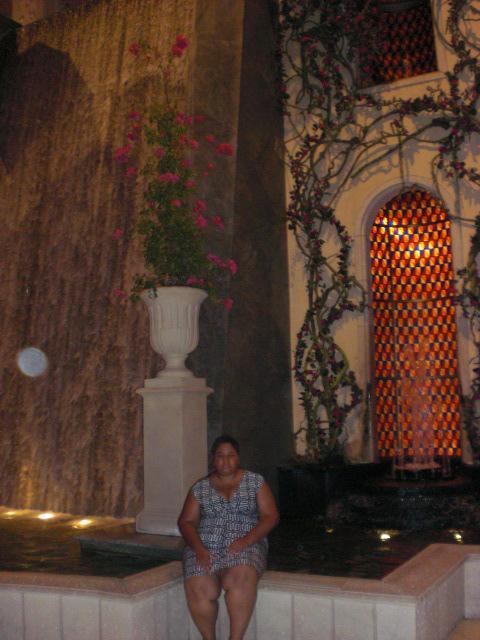 Nikki, waterfall, grotto, Palazzo