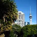 Beautiful Albert Park in downtown Auckland - Sky Tower in background..